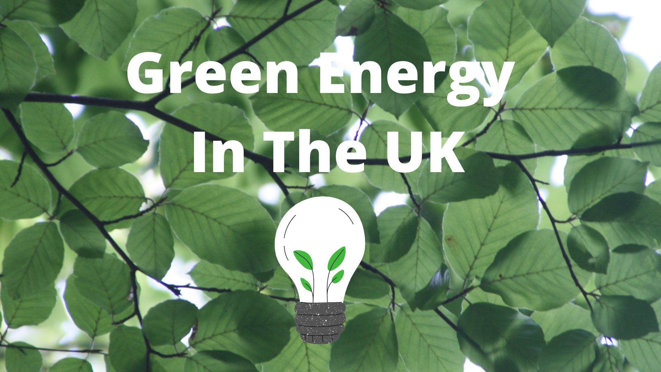 Green Energy In UK: what it is and why you should choose it