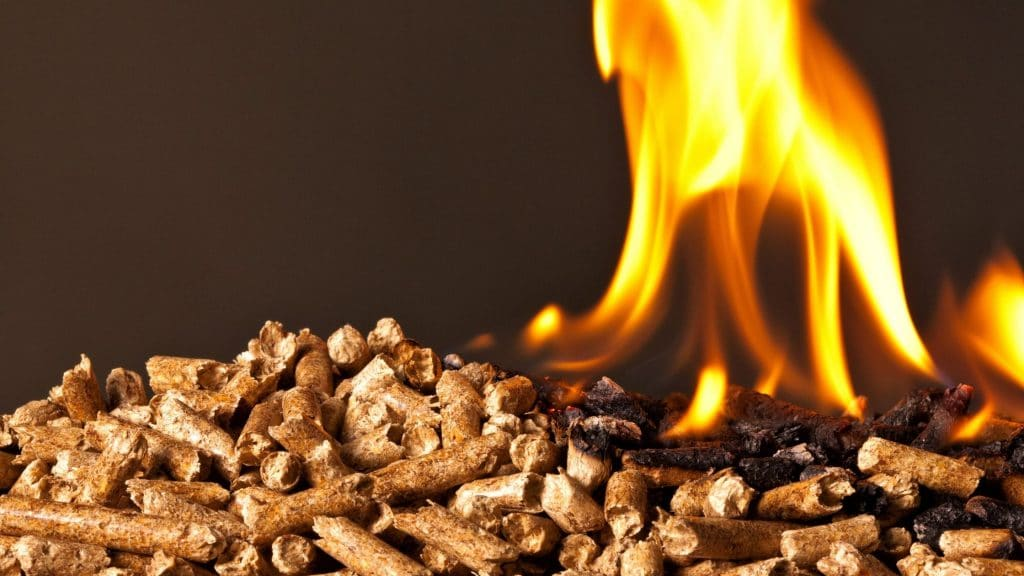 Advantages And Disadvantages of Biomass Energy